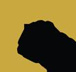 sap regulatory icon