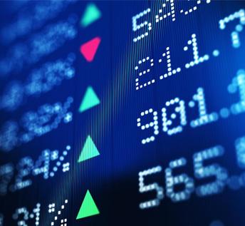 stocks egypt law