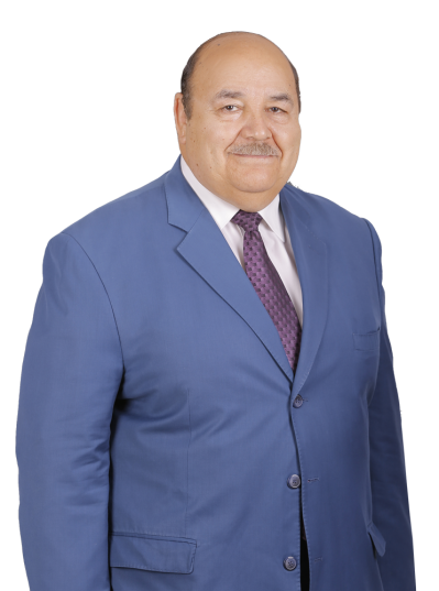 el sayed egypt lawyer